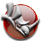 McNeel Rhinoceros: NURBS Modeling